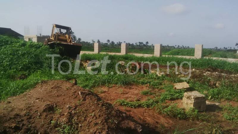Land for sale Ngor-Okpala Ngor-Okpala Imo - 9