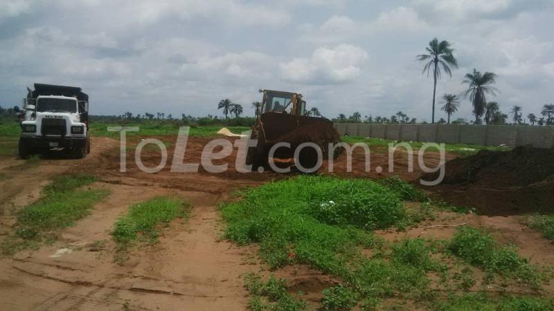 Land for sale Ngor-Okpala Ngor-Okpala Imo - 6