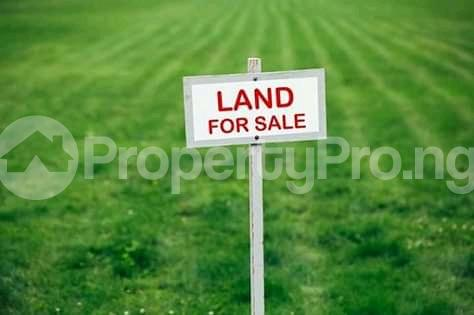 Commercial Land Land for sale Along Talba farm before Building Materials Market Shiroro Niger - 0