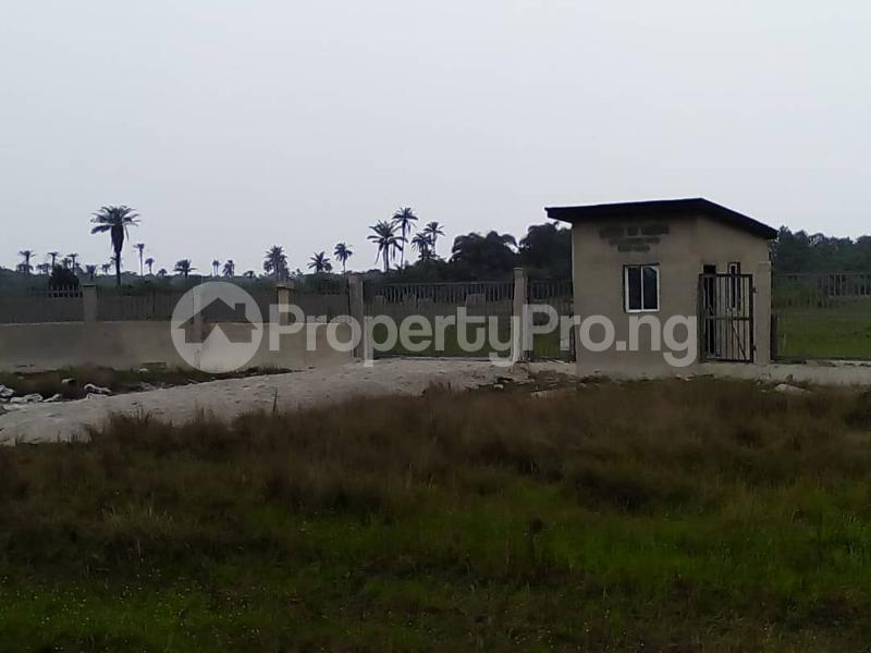 Serviced Residential Land Land for sale behind 2nd niger bridge  Asaba Delta - 0