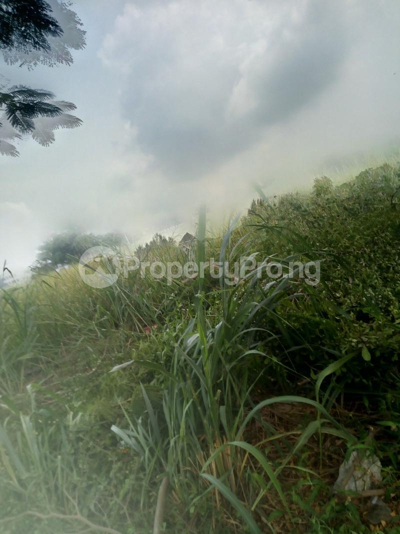 Commercial Land Land for rent Off adeola adeku Adeola Odeku Victoria Island Lagos - 0