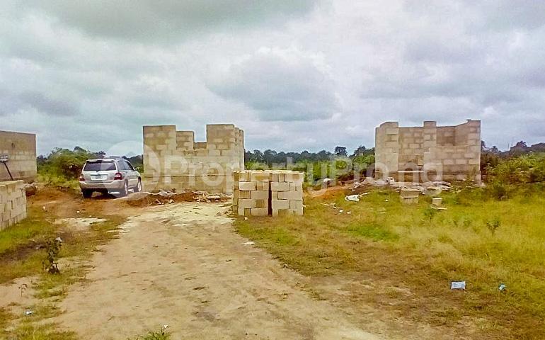 Mixed   Use Land Land for sale Beside Akwa Ibom International Airport. Uyo Akwa Ibom - 2
