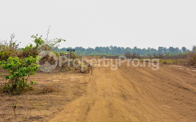 Mixed   Use Land Land for sale Beside Akwa Ibom International Airport. Uyo Akwa Ibom - 3