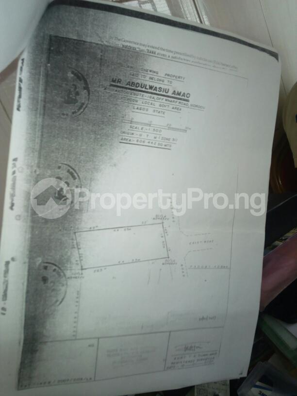 Land for sale Ipakodo Ebute Ikorodu Lagos - 2