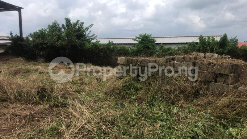 Industrial Land Land for sale Harbour Rd, Ikot Mbo Rubber Esta, Calabar Calabar Cross River - 9