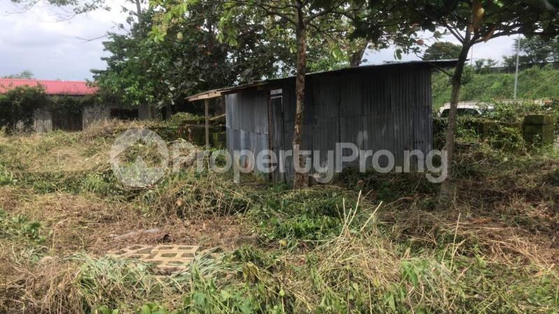 Industrial Land Land for sale Harbour Rd, Ikot Mbo Rubber Esta, Calabar Calabar Cross River - 0