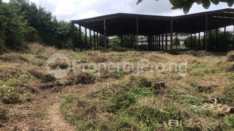 Industrial Land Land for sale Harbour Rd, Ikot Mbo Rubber Esta, Calabar Calabar Cross River - 4