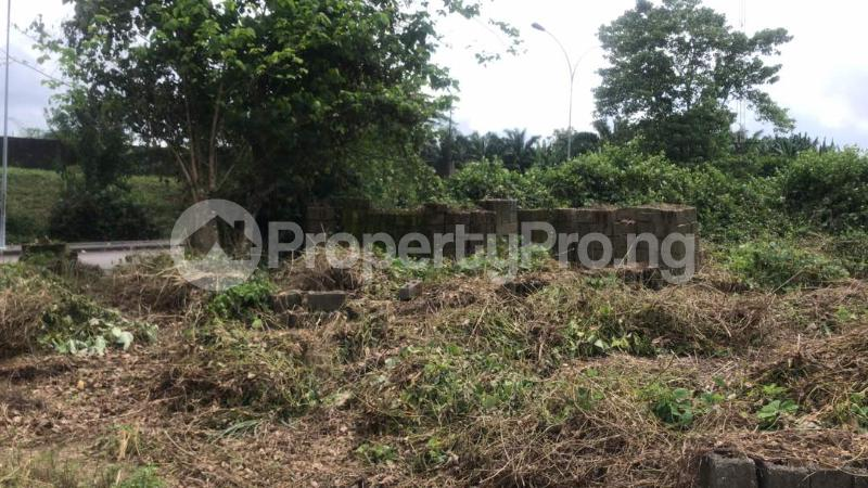 Industrial Land Land for sale Harbour Rd, Ikot Mbo Rubber Esta, Calabar Calabar Cross River - 1