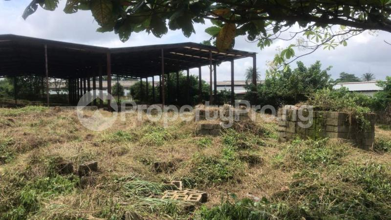 Industrial Land Land for sale Harbour Rd, Ikot Mbo Rubber Esta, Calabar Calabar Cross River - 8