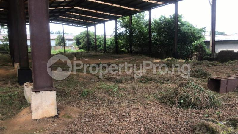 Industrial Land Land for sale Harbour Rd, Ikot Mbo Rubber Esta, Calabar Calabar Cross River - 7