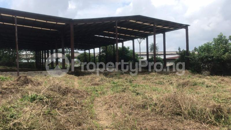 Industrial Land Land for sale Harbour Rd, Ikot Mbo Rubber Esta, Calabar Calabar Cross River - 2