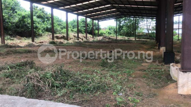 Industrial Land Land for sale Harbour Rd, Ikot Mbo Rubber Esta, Calabar Calabar Cross River - 6