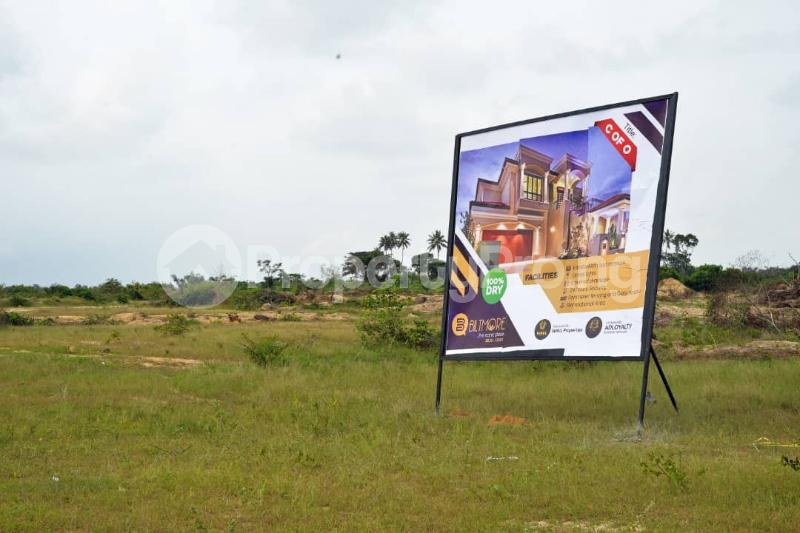 Residential Land Land for sale Free Trade Zone Ibeju-Lekki Lagos - 2