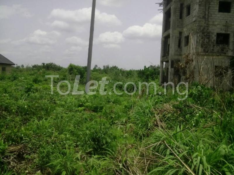 Land for sale Umudoche Umuoma Nekede, Owerri West, Nekede, Owerri, Imo Owerri Imo - 0