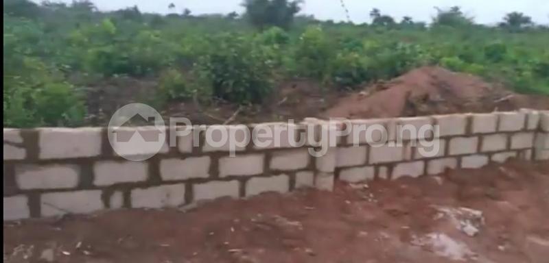 Land for sale GOODLIFE ESTATE AZAGBA-OGWASI, Asaba Delta - 0