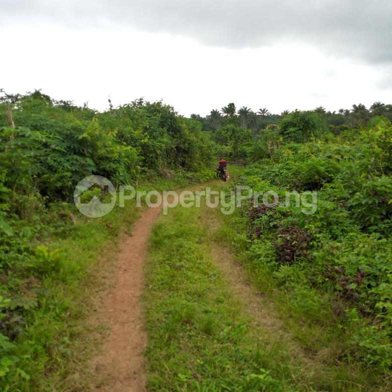 Land for sale near orisunbare off Lagos Ibadan express way Odo ona Ibadan Oyo - 1
