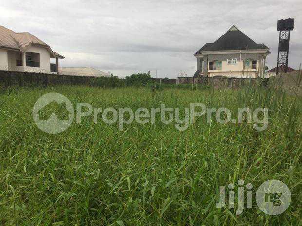 Residential Land Land for sale 6th. Avenue, Festac town, Amuwo Odofin, Festac Amuwo Odofin Lagos - 1