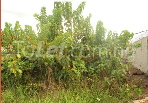 Land for sale Land Measuring 2.87 Hectares Now Available for Sale at Export Processing Zone, at Industrial Layout, Ikot Abasi, Ikot Abasi Local  Goverment of Akwa Ibom State Ikot Abasi Akwa Ibom - 0