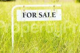 Mixed   Use Land Land for sale Ikemu Road, Ogugu,  Olamabolo Kogi - 1