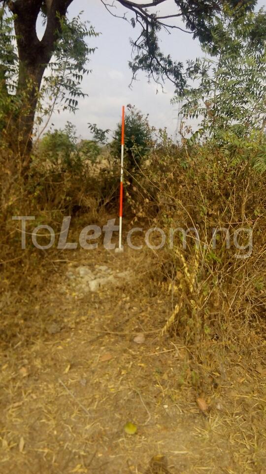 Land for sale Gbagede, Kabba Road Ganmo Ilorin Kwara - 4