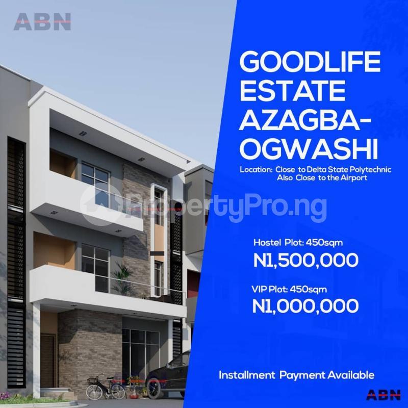 Land for sale GOODLIFE ESTATE AZAGBA-OGWASI, Asaba Delta - 3