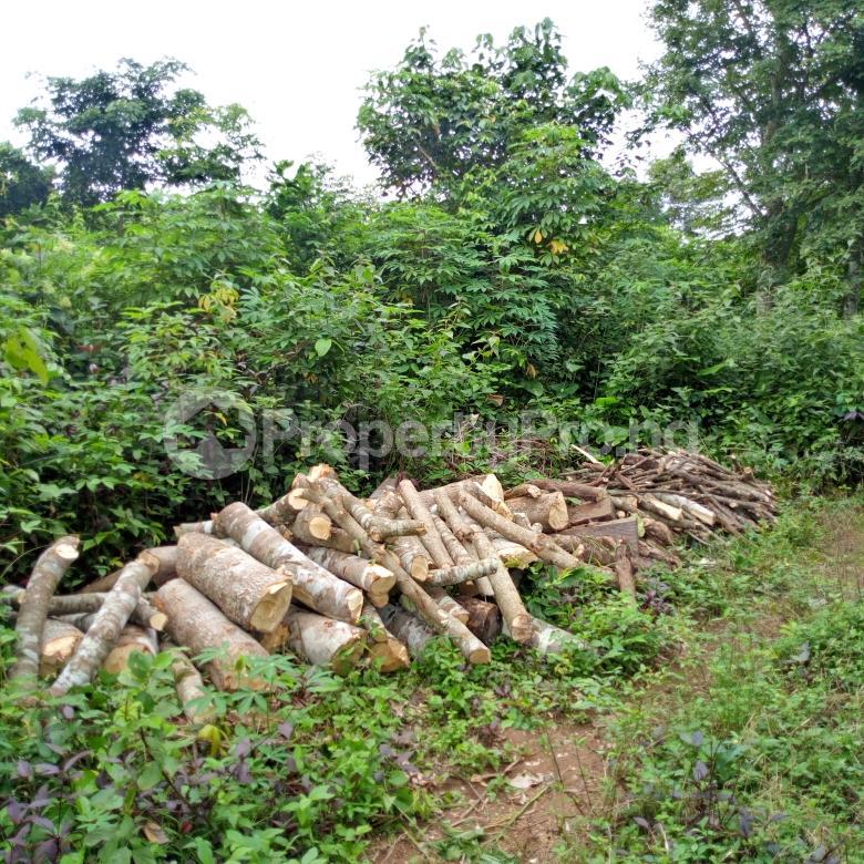 Land for sale near orisunbare off Lagos Ibadan express way Odo ona Ibadan Oyo - 0