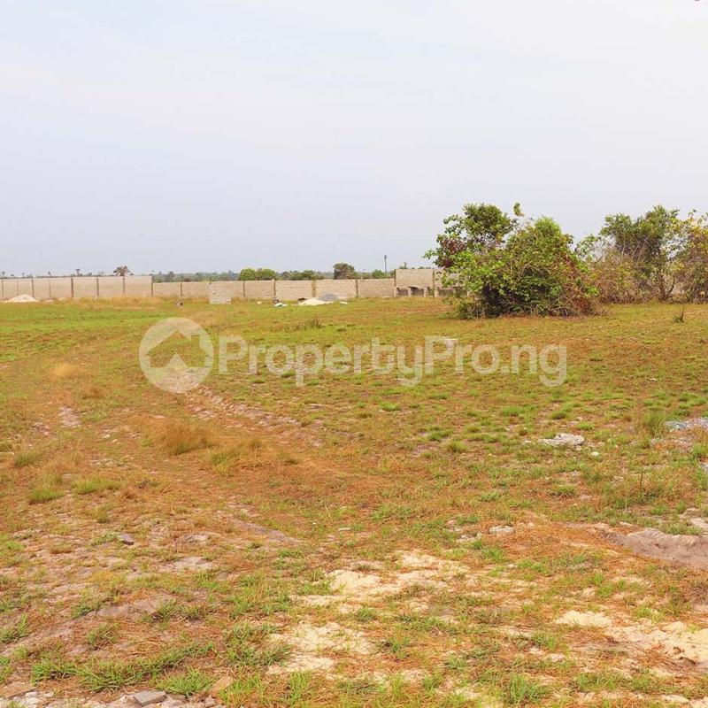 Mixed   Use Land Land for sale Free Trade Zone Ibeju-Lekki Lagos - 2