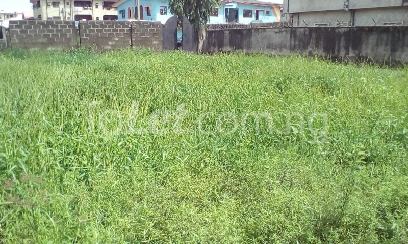 2 bedroom House for sale Park view estate Ago palace Okota Lagos - 1