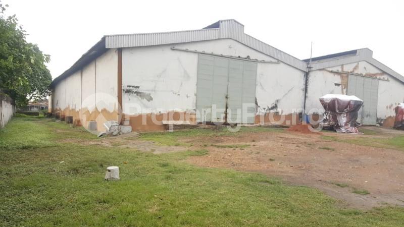 Warehouse Commercial Property for sale ----- Oshodi Expressway Oshodi Lagos - 1