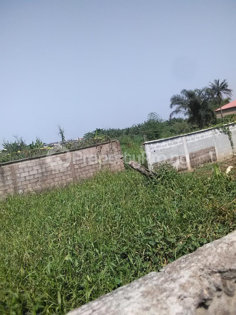 Detached Bungalow House for sale Mosan ipaja shagari extension Alimosho Lagos - 19