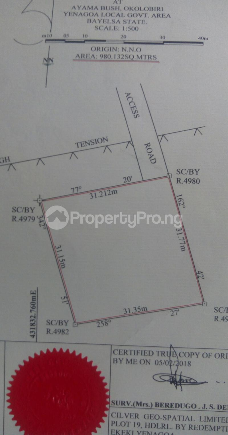 Mixed   Use Land Land for sale 16c Gwegwe Street Yenegoa Bayelsa - 0