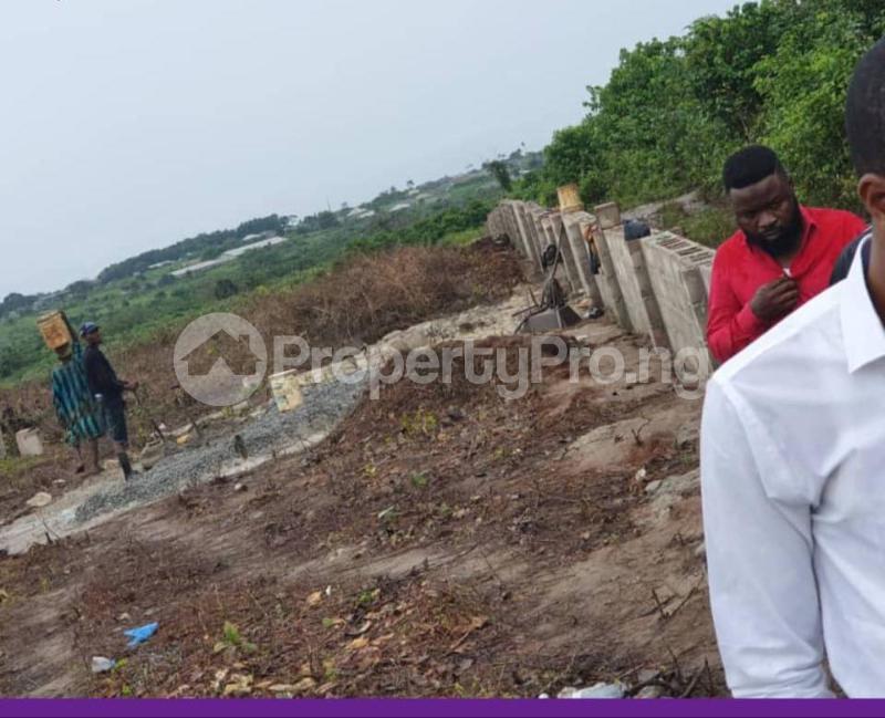 Mixed   Use Land Land for sale  - Attogodo, Ariganrigan Village Poka Epe    Epe Road Epe Lagos - 7