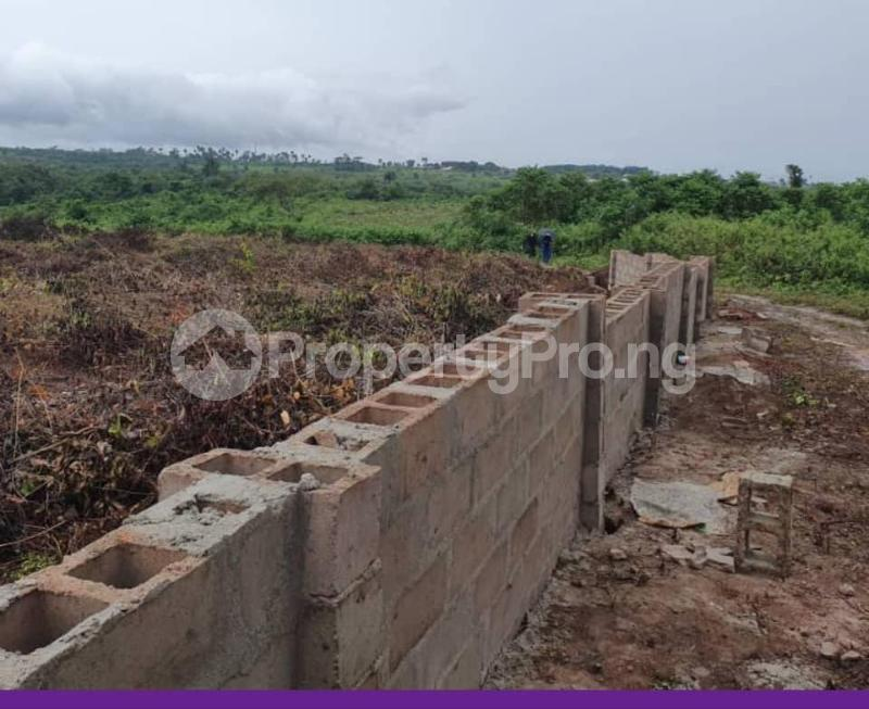 Mixed   Use Land Land for sale  - Attogodo, Ariganrigan Village Poka Epe    Epe Road Epe Lagos - 5