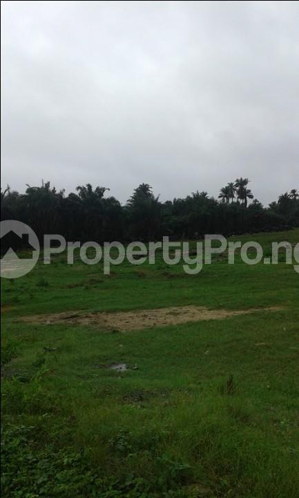 Land for sale Oke Ira, Ogba Oke-Ira Ogba Lagos - 0
