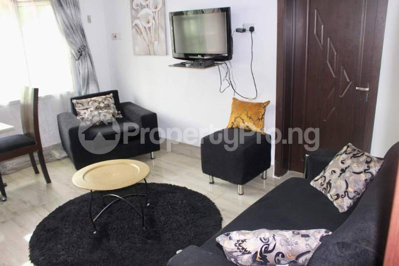 1 bedroom mini flat  Flat / Apartment for shortlet - Old Ikoyi Ikoyi Lagos - 23