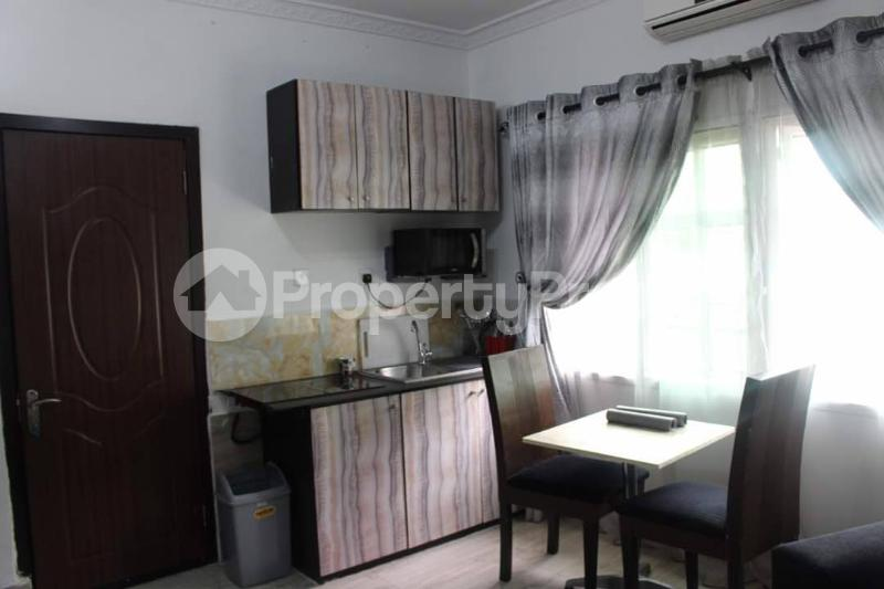1 bedroom mini flat  Flat / Apartment for shortlet - Old Ikoyi Ikoyi Lagos - 24