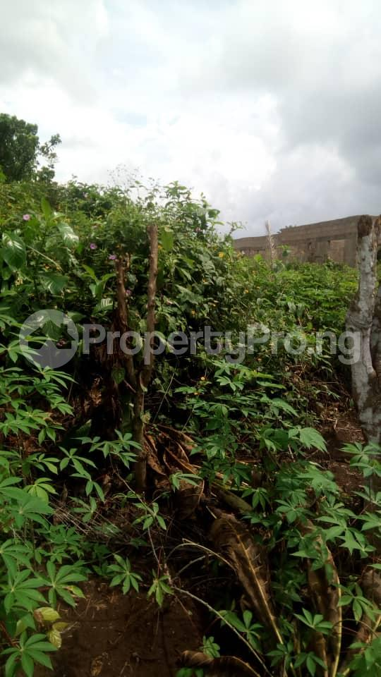 Mixed   Use Land Land for sale Inside No. 5 Busstop Naze Owerri Owerri Imo - 6