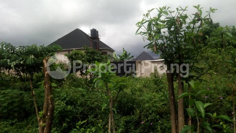 Mixed   Use Land Land for sale Inside No. 5 Busstop Naze Owerri Owerri Imo - 1