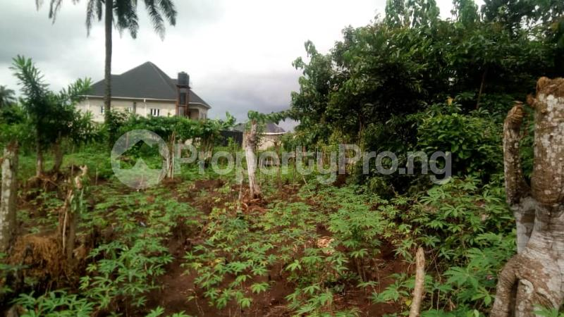 Mixed   Use Land Land for sale Inside No. 5 Busstop Naze Owerri Owerri Imo - 4