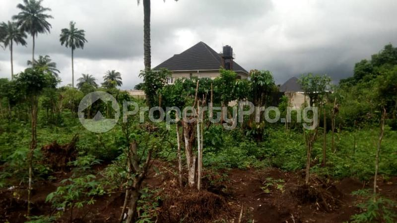 Mixed   Use Land Land for sale Inside No. 5 Busstop Naze Owerri Owerri Imo - 3