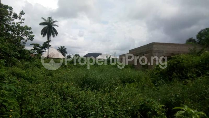 Mixed   Use Land Land for sale Inside No. 5 Busstop Naze Owerri Owerri Imo - 5