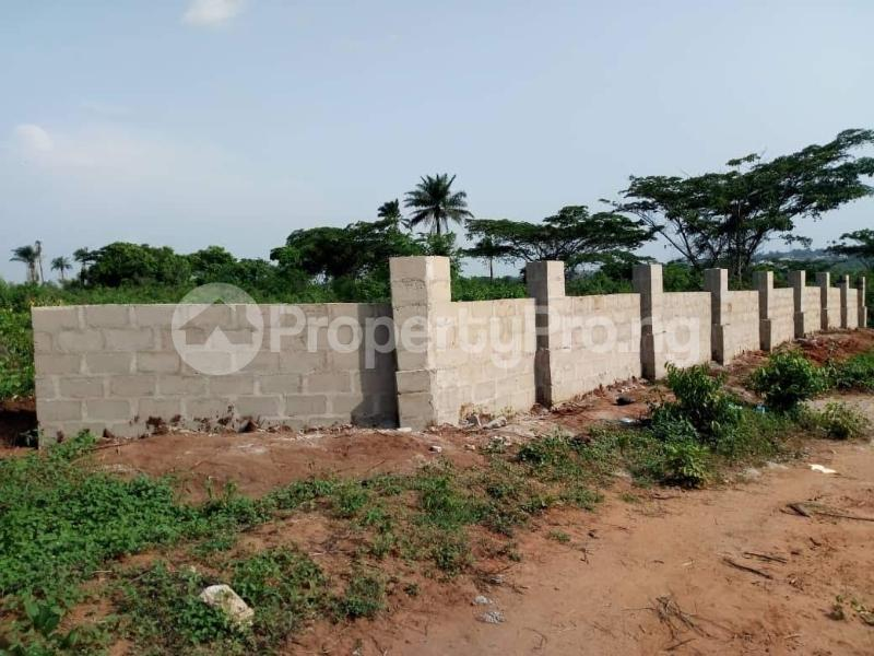 Residential Land Land for sale Behind Asaba Airport and 2nd Niger Bridge Proposed Link Road Asaba Delta - 3