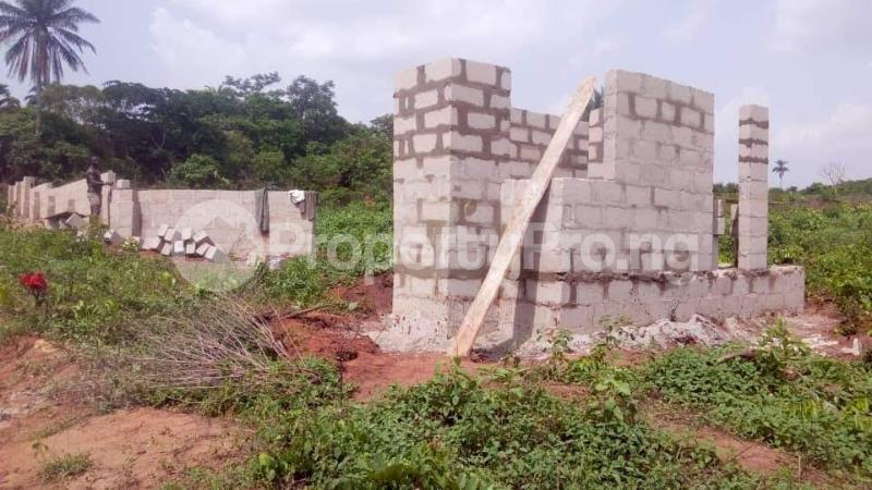 Residential Land Land for sale Behind Asaba Airport and 2nd Niger Bridge Proposed Link Road Asaba Delta - 4