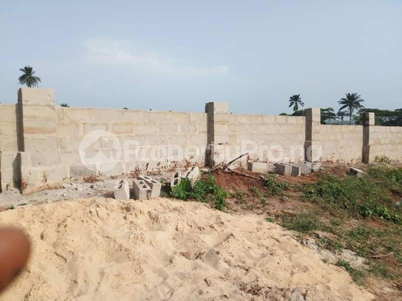Residential Land Land for sale Behind Asaba Airport and 2nd Niger Bridge Proposed Link Road Asaba Delta - 2