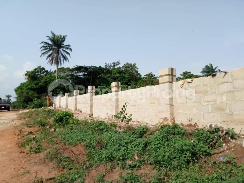 Residential Land Land for sale Behind Asaba Airport and 2nd Niger Bridge Proposed Link Road Asaba Delta - 0