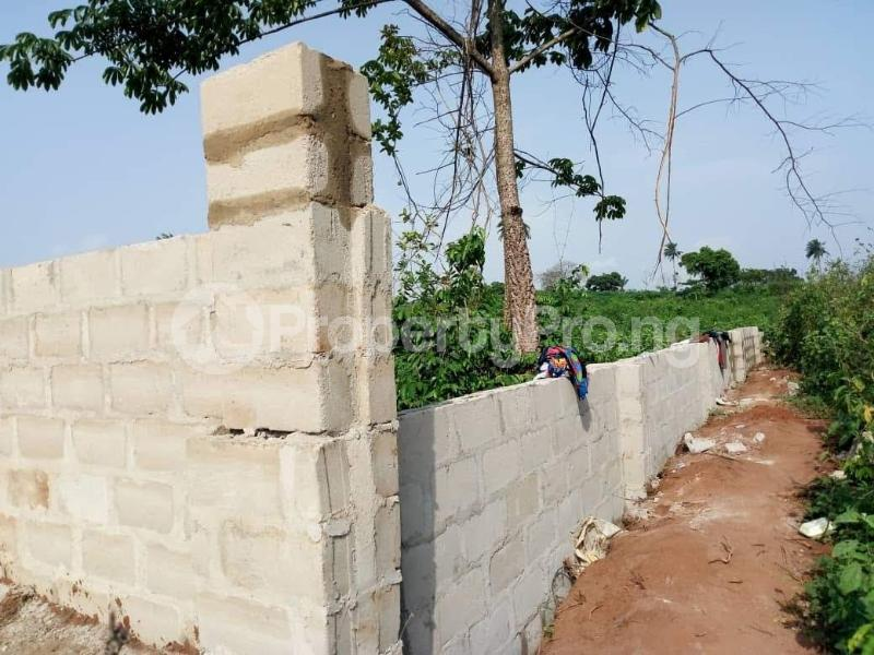Residential Land Land for sale Behind Asaba Airport and 2nd Niger Bridge Proposed Link Road Asaba Delta - 1