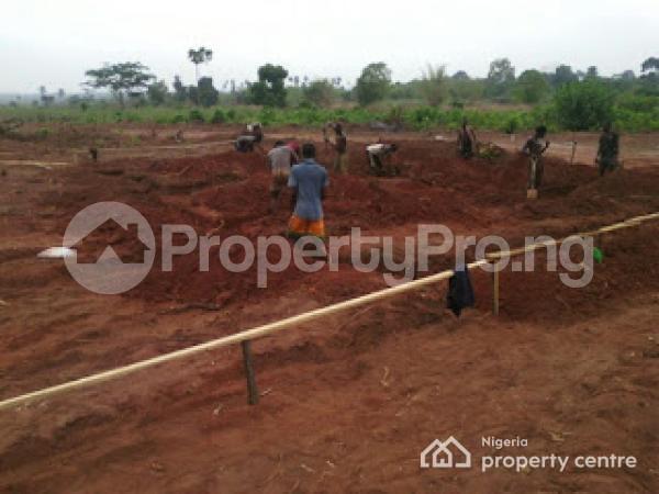 Mixed   Use Land Land for sale Oshimili Delta - 2