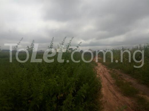 Land for sale kaduna Chikun Kaduna - 0