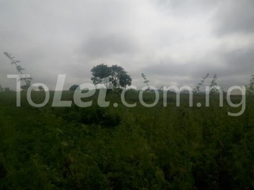 Land for sale kaduna Chikun Kaduna - 1