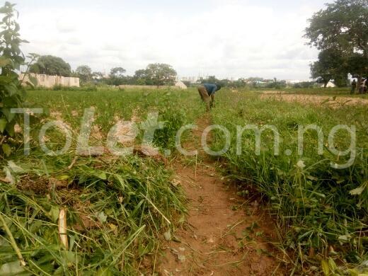 Land for sale mahuta,kaduna Kaduna South Kaduna - 4